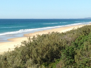 Sushnine Beach surf club area primed for holidays starting this week.